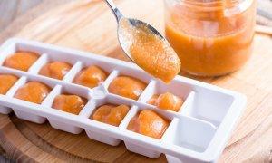 Die besten Behälter für das Einfrieren von Babybrei